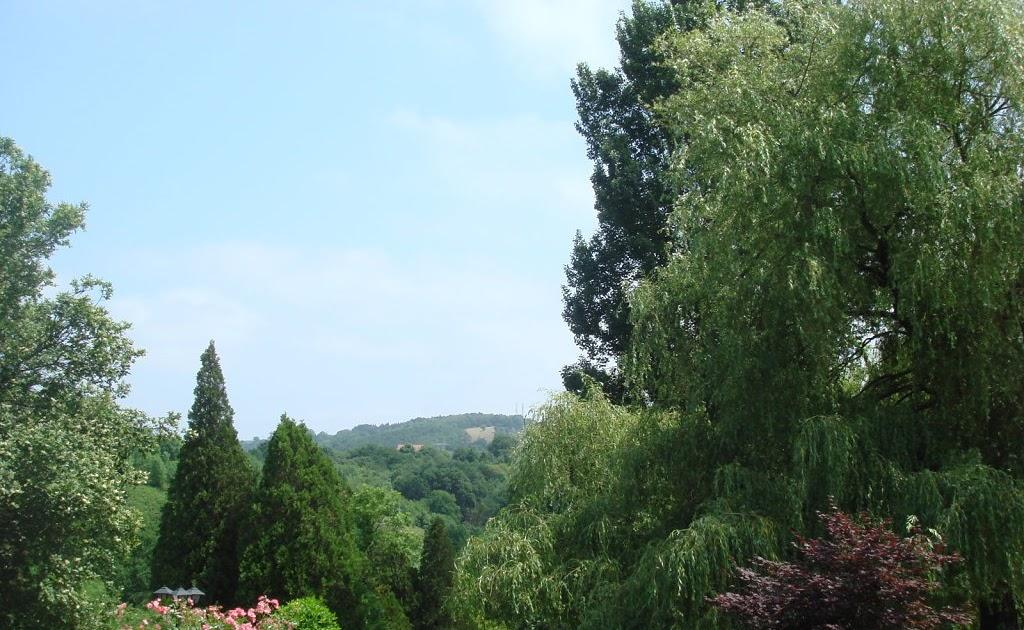 Arte y jardiner a dise o de jardines setos campestres for Utiles de jardineria
