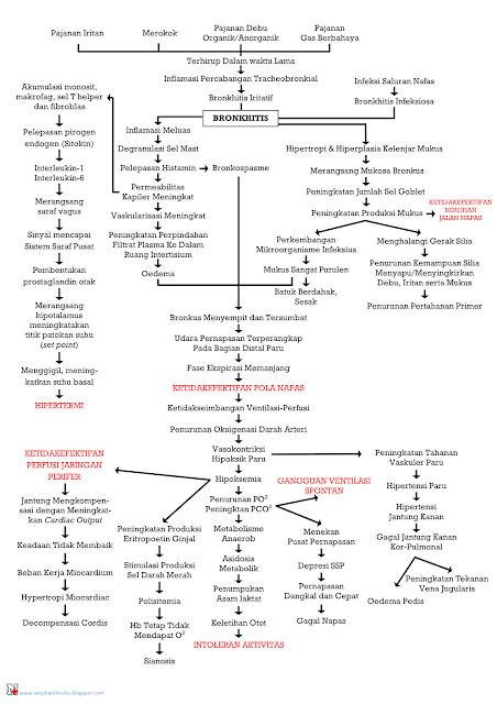 Perjalanan Penyakit Bronkitis Hingga Diagnosis Keperawatan