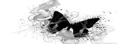 couverture facebook papillon noir et blanc