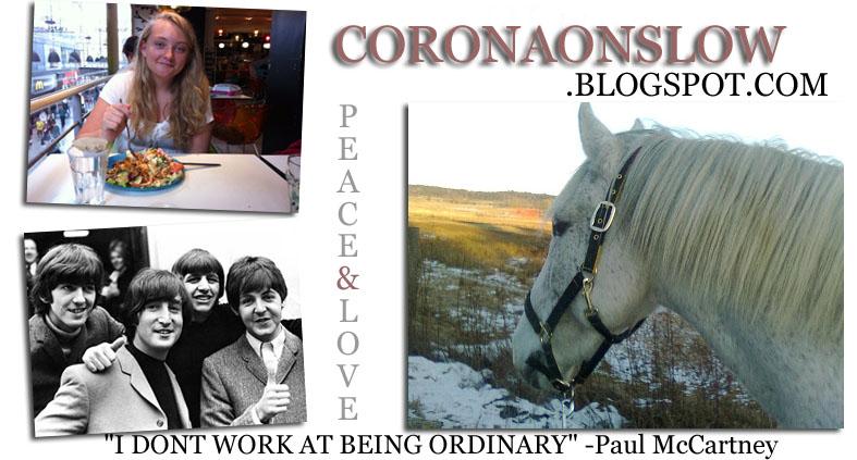www.coronaonslow.blogspot.com