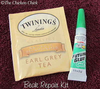 broken beak repair kit