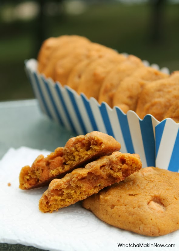 Butterscotch Pumpkin Cookies - soft, chewy, and perfect flavor combo! You must make these this fall!