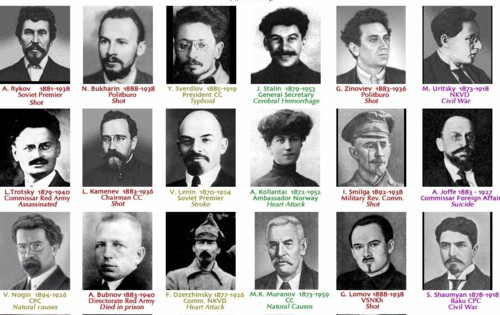the role of the bolsheviks for Modern history research essay: the russian revolution (task 1) assess the role of the bolsheviks for the decline and fall of the romanov dynasty the beginning of the 20th century brought radical changes to the social and political structure of autocratic russia it was a period of regression.