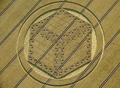nuevo dibujo en los campos de trigo