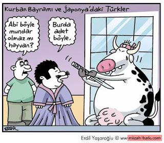 Kurban bayramı komik karikatürler