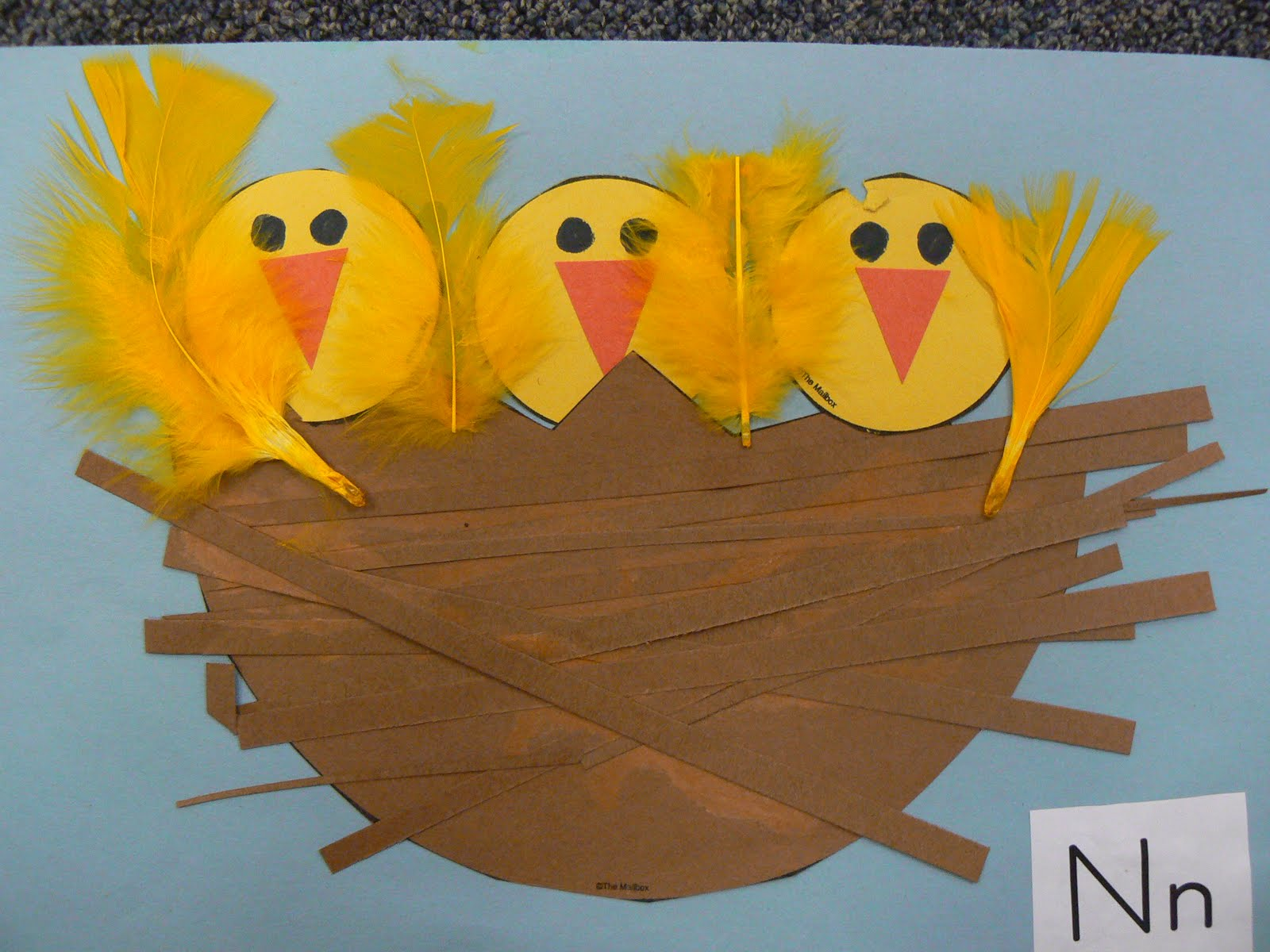 Mrs t 39 s first grade class for Birds project