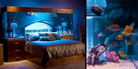Something Amazing Awesome Aquarium Bed