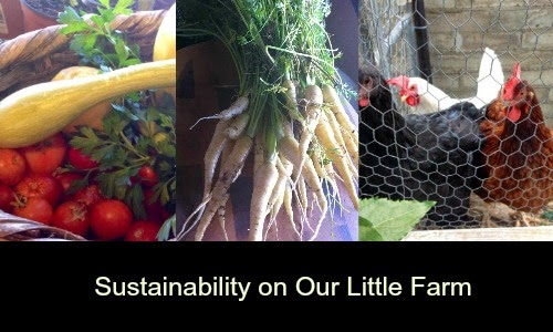 Sustainability and finances on the farm.
