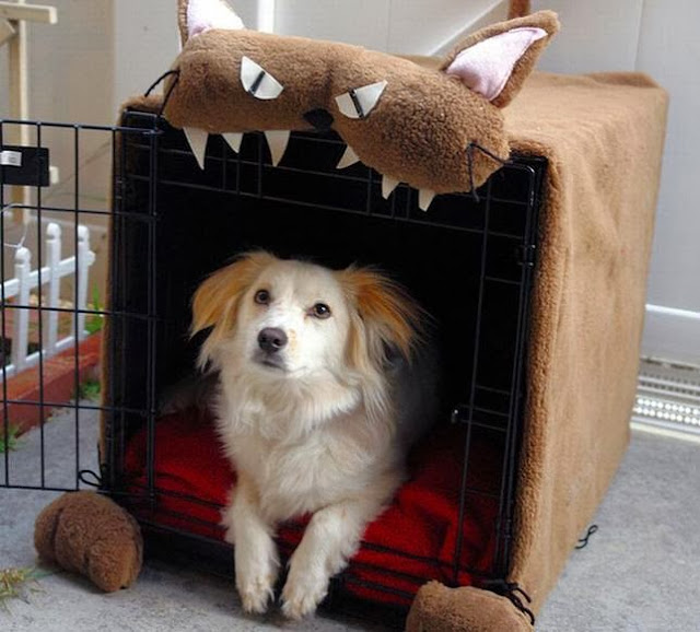 Monster Dog Crate