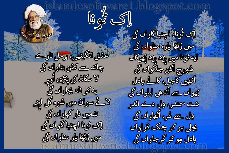 baba bulleh shah punjabi poetry 4