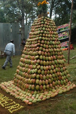 Ooty Fruit Show Photos