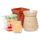 I Love Scentsy- Safe Wickless Wonderful Scents for your Home!