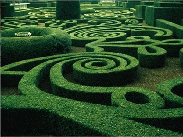 Que hago hoy en el jardín...: Damos una vuelta por los jardines ...