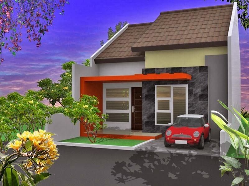 Rumah Minimalis Type 45 1