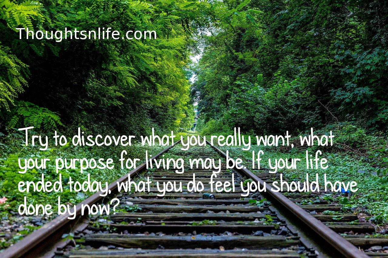 Thoughtsnlife.com: Try to discover what you really want, what your purpose for living may be.If your life ended today, what you feel you should have done by now ?