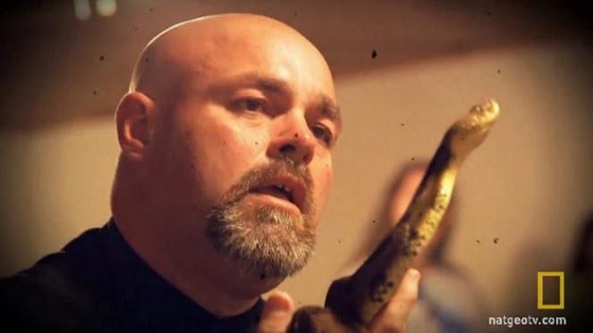 Predicador que usaba serpientes en sus sermones muere de una mordida
