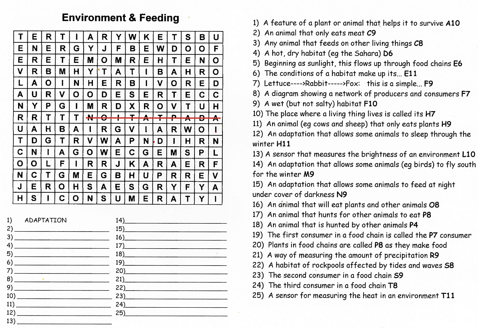 ... & Feeding Relationships - A Quiz Wordsearch! | Science Puzzles