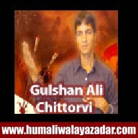http://ishqehaider.blogspot.com/2013/11/gulshan-ali-chittorvi-nohay-2014.html