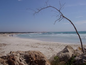 Playa de Sa Ràpita