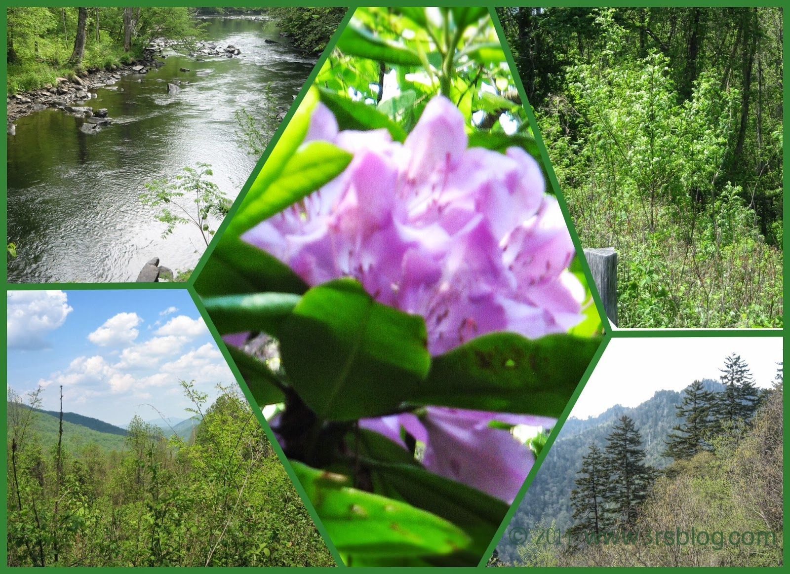 smoky mountains spring collage