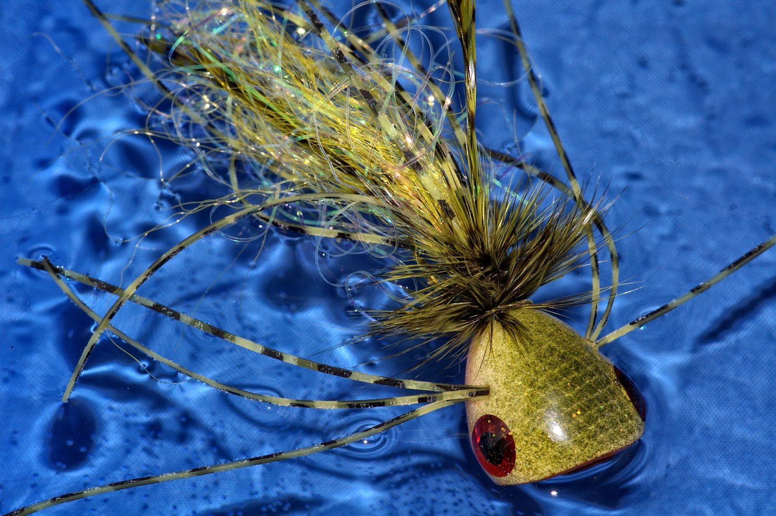 Bluegill on poppers fly fish food fly tying and fly for Fly fishing poppers
