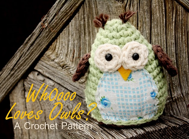 Crochet Owl : ... Free Amigurumi Patterns: Simple and Sweet Free Owl Crochet Pattern