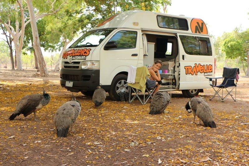 Mataranka - camping