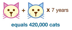 Cat Math
