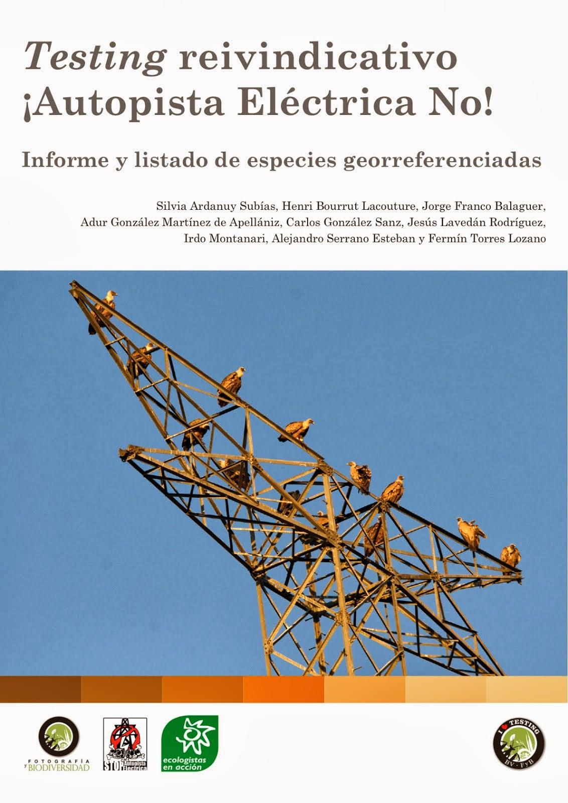 Informe Testing Reivindicativo ¡Autopista Eléctrica NO!