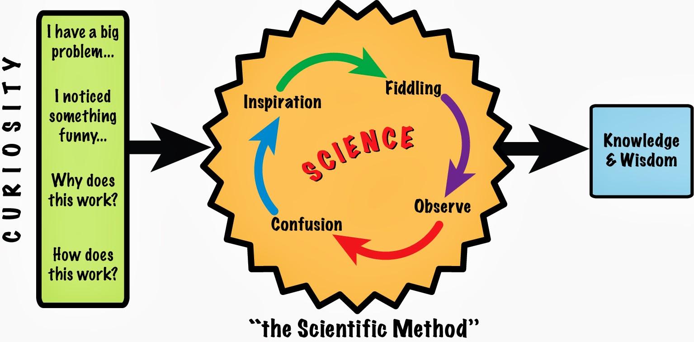 scientific method 14 essay