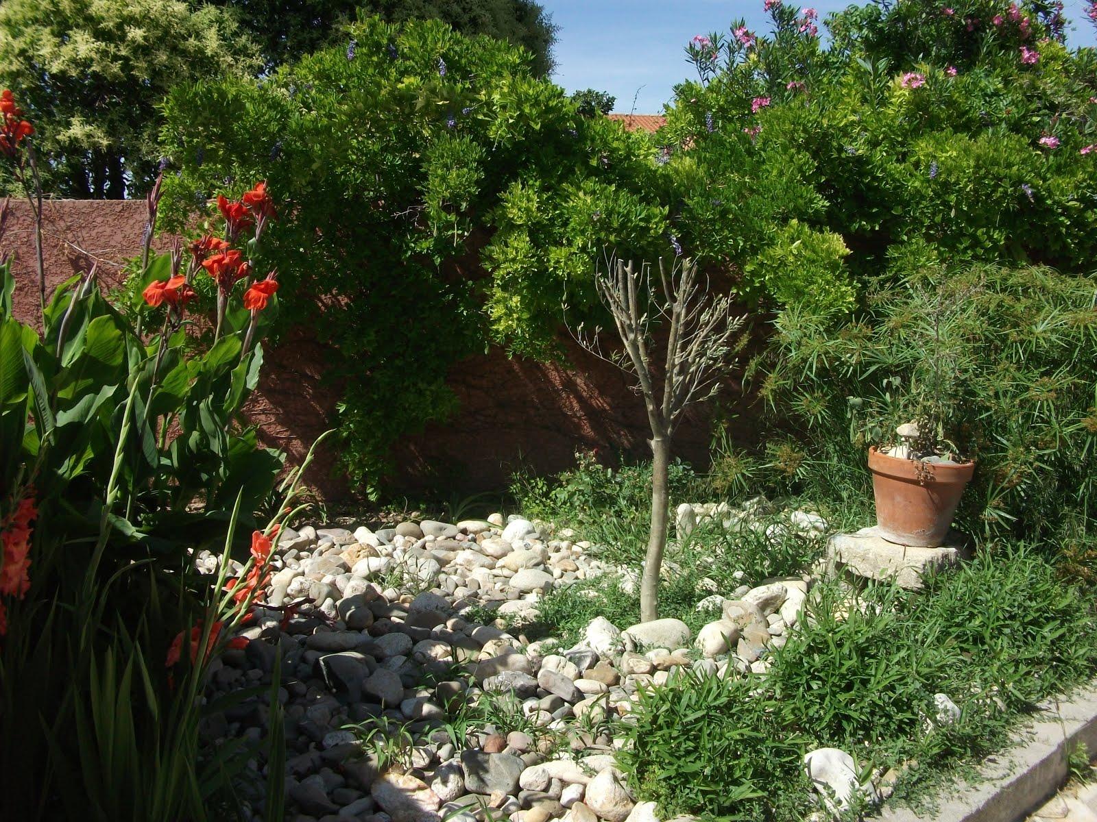 Villa olivier - Un coin de verdure