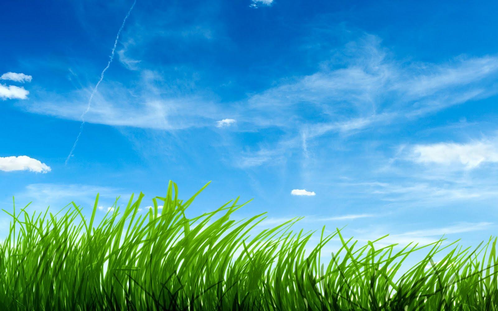 http://2.bp.blogspot.com/-qq1ffJTUi-o/UGUfig7lt0I/AAAAAAAAHiI/qnwyGSXVWP4/s1600/Nature-wallpaper-98.jpeg