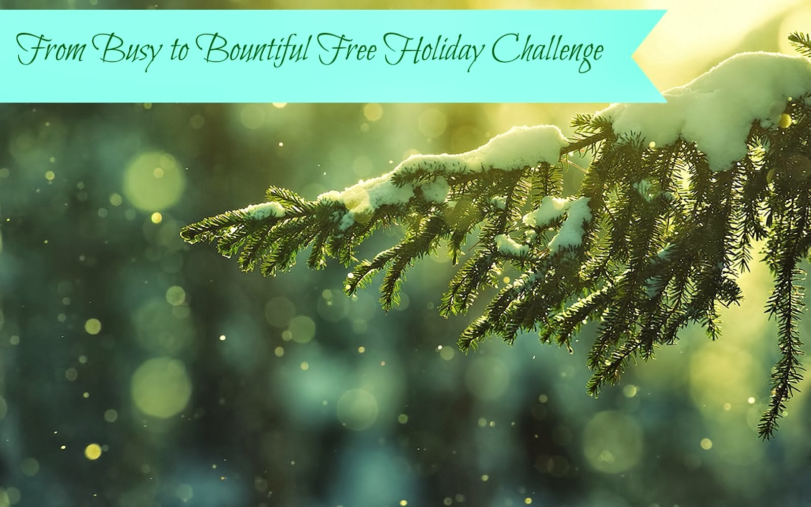 Free 28 Day Holiday Challenge