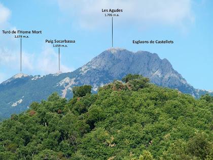 La zona de Les Agudes i Castellets des del Mas de Sant Climent