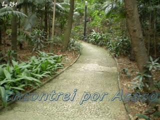 Os caminhos internos do Parque Trianon