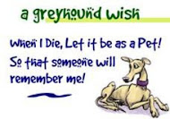 Greyhound Rescue and Rehabilitation