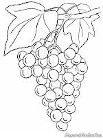 Pohon Anggur Dengan Buah Yang Lebat