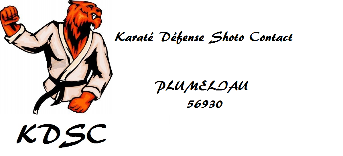 karate defense shoto contact
