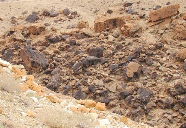 Padurea pietrificata - Tunisia
