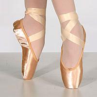 Insteps Dance Shoe