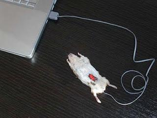Mouse Komputer Unik Beda Dari Biasanya
