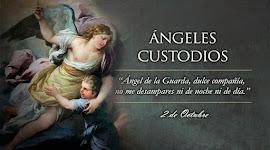 Custodia