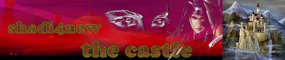 <pre>           the castle      </pre>