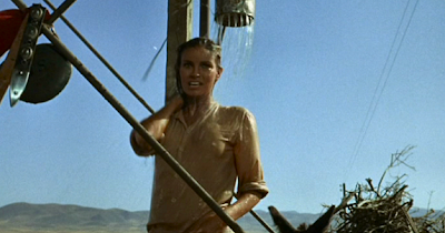 Raquel Welch stands under a water tower showering as a distraction to the oncoming Mexican army.