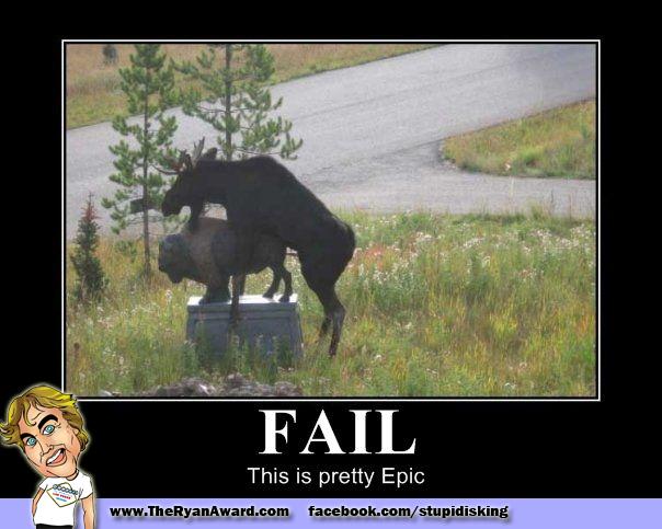 Epic Fail! Moose Humping a Buffalo Statue