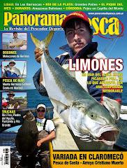 Ya salió revista Panorama de Pesca- Enero 2015