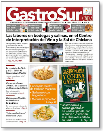 GastroSur nº4 portada