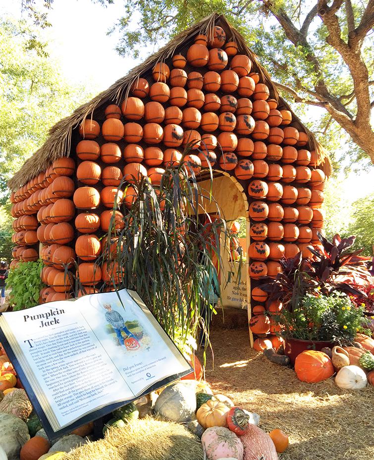 Dallas Arboretum and Botanical Gardens Pumpkin Village Pumpkin House
