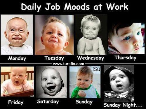 Funny Memes Office Work : Office first world problems callcentermemes