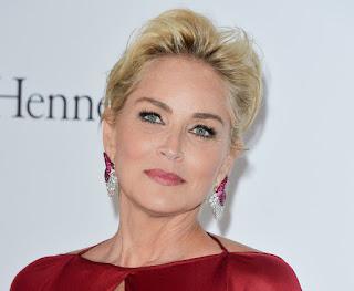 Sharon Stone Tells the Impact of Her Brain Bleeding on Her Career